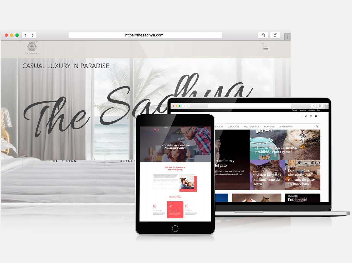Diseñador web freelance y diseñador grafico