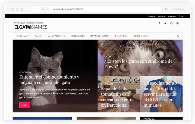 Diseño web revista online gatos