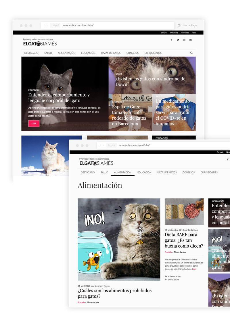 diseño de revista online el gato siames