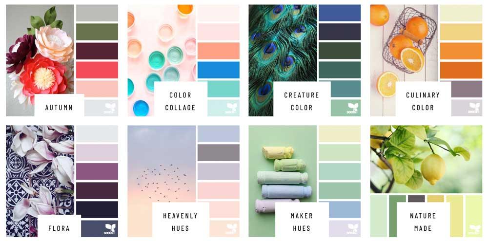 ejemplo de paleta de colores